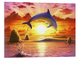 Foam board print  Day of the dolphin - sunset - Robin Koni