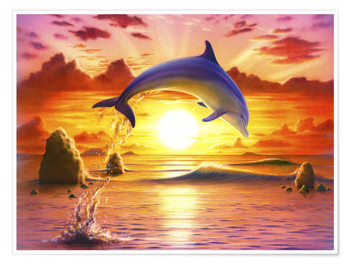 Premium poster Day of the dolphin - sunset