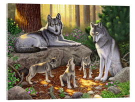 Acrylic glass  A family of wolves - Chris Hiett