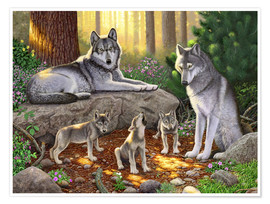 Premium poster A family of wolves