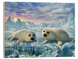 Wood print  Seal pups - Adrian Chesterman