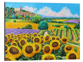 Aluminium print  Vineyards and sunflowers in Provence - Jean-Marc Janiaczyk