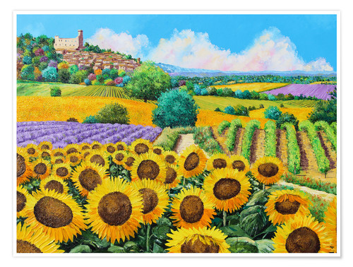 Premium poster Vineyards and sunflowers in Provence