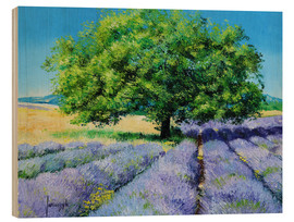 Wood print  Tree and Lavenders - Jean-Marc Janiaczyk