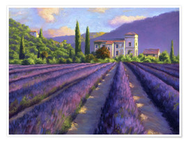 Premium poster  Lavender field with Abbey - Jay Hurst