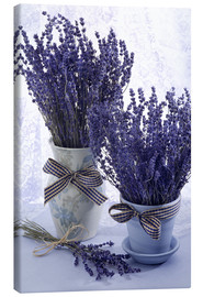 Canvas print  Lovely Lavender - Simon Kayne