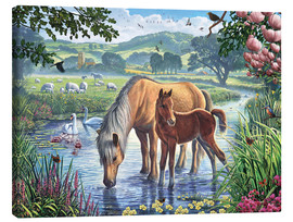 Canvas  Fell ponies - Steve Crisp