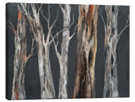 Canvas print  Eucalyptus trees - Jitka Krause