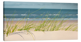 Canvas print  Dune with fine beach grass - Reiner Würz