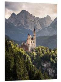 Forex  Neuschwanstein Castle in front of the Alps - Andreas Wonisch