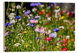 Wood print  colorful flower meadow - Filtergrafia