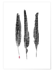 Premium poster The author's feathers