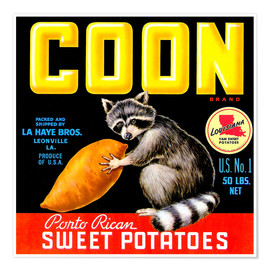 Premium poster  Coon - Advertising Collection