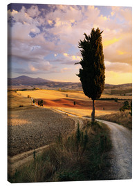 Canvas print  Sunset over Val d'Orcia, Tuscany - Matteo Colombo