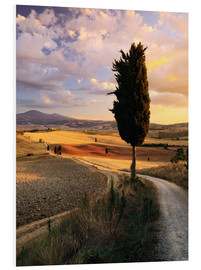 Foam board print  Evening in the Val d'Orcia, Tuscany - Matteo Colombo