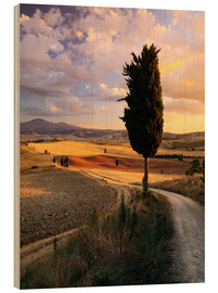 Wood print  Evening in the Val d'Orcia, Tuscany - Matteo Colombo