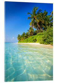 Acrylic print  Dream beach in the Maldives - Matteo Colombo