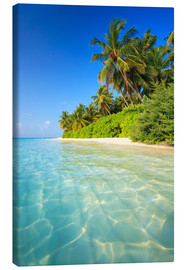 Canvas print  Dream beach in the Maldives - Matteo Colombo