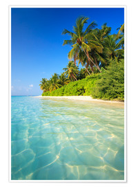 Premium poster  Dream beach in the Maldives - Matteo Colombo