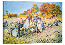 Canvas  Digging potatoes - Carl Larsson