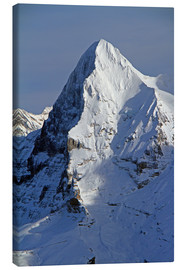 Canvas  Eiger North Face - Gerhard Albicker