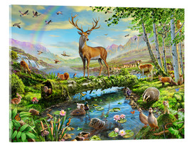Acrylic glass  24402 Wildlife Splendor UK - Adrian Chesterman