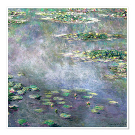Premium poster Waterlily pond