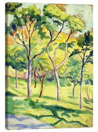 Canvas  Trees on a lawn - August Macke