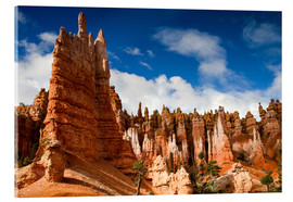 Acrylic print  Queen's garden trail at Bryce Canyon - Circumnavigation