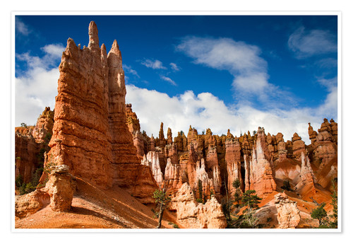 Premium poster Queen's garden trail at Bryce Canyon