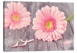 Canvas print  Gerbera flower bloom - pixelliebe
