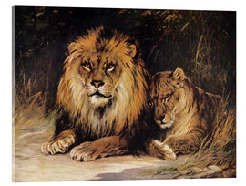 Acrylic glass  Lions