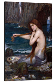 Aluminium print  The mermaid - John William Waterhouse