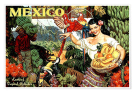 Premium poster  Mexico - Travel Collection