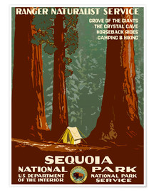 Premium poster  Sequoia National Park - Travel Collection