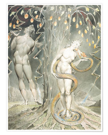 Premium poster  Adam and Eve - William Blake
