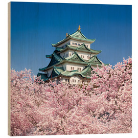 Wood print  Nagoya castle with cherry blossom in spring - Jan Christopher Becke