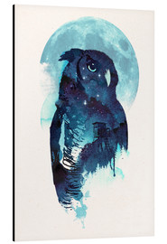 Aluminium print  Night Owl - Robert Farkas
