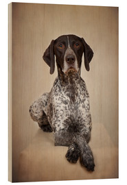 Wood print  German shorthaired pointer / 1 - Heidi Bollich