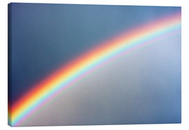 Canvas print  Rainbow - Laurent Laveder