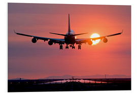 Foam board print  Aeroplane landing at sunset - David Nunuk