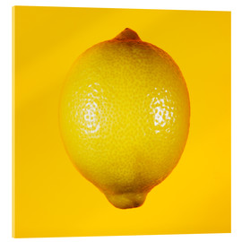 Acrylic print  Lemon against yellow background - Mark Sykes