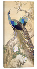 Canvas print  Two peacocks in spring - Imao Keinen