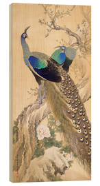 Wood print  Two peacocks in spring - Imao Keinen
