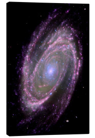 Canvas print  Spiral galaxy M81 - NASA
