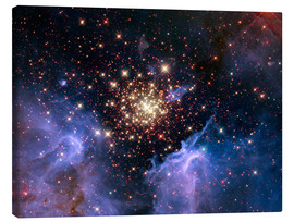 Canvas print  Open star cluster NGC 3603, HST image - NASA