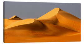 Canvas print  Great Sand Sea, Sahara - Moser