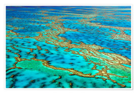 Premium poster  Great Barrier Reef, Australia - I. Schulz