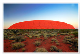 Premium poster  Ayers Rock at sunrise - I. Schulz