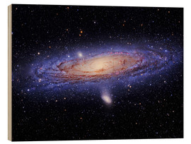 Wood print  Andromeda galaxy - Tony & Daphne Hallas
